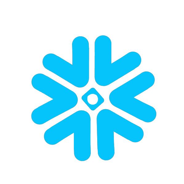 Cubiq ja Snowflake yhteistyöhön